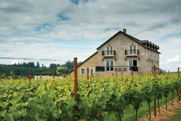Best Oregon Wineries Bjornson Vineyard